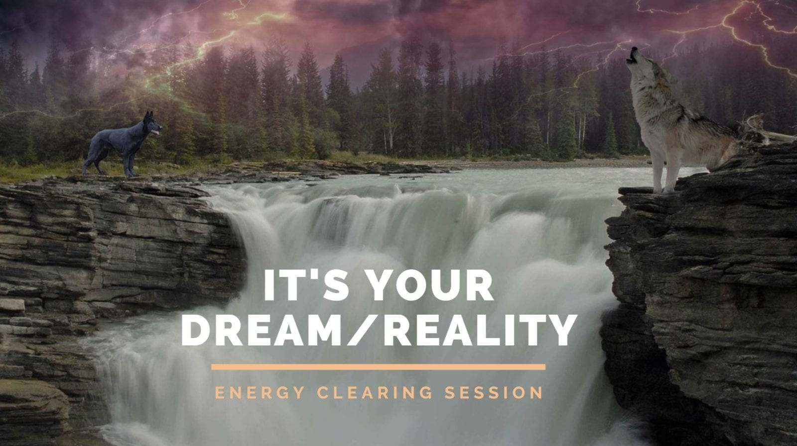 You Create Your Reality